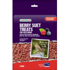 Gardman Berry Flavour Suet Treats